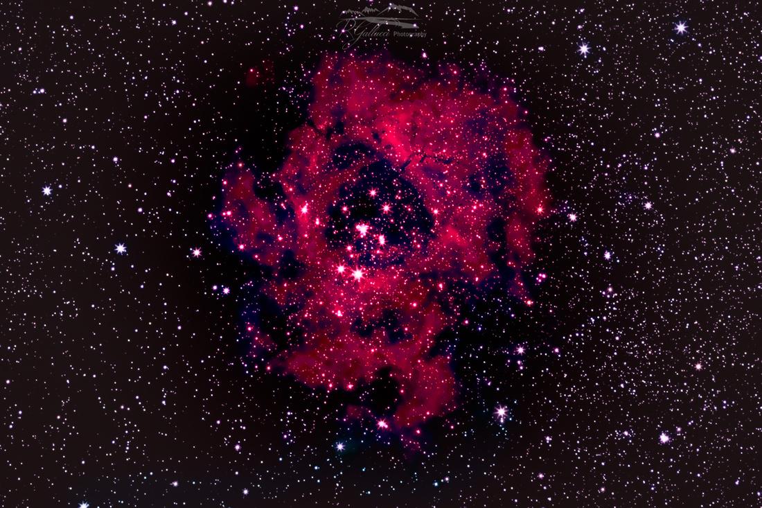 Rosetta Nebula