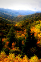 Fall of the Blue Ridge Parkway #1